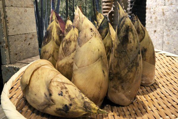 鹿児島産 竹の子焼