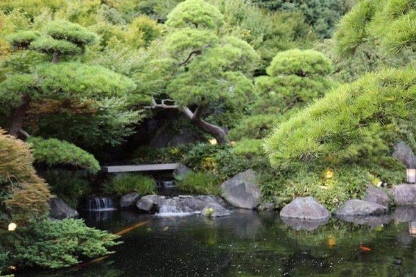 Summer Japanese Garden