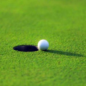 ゴルフ 昭和の森車屋杯