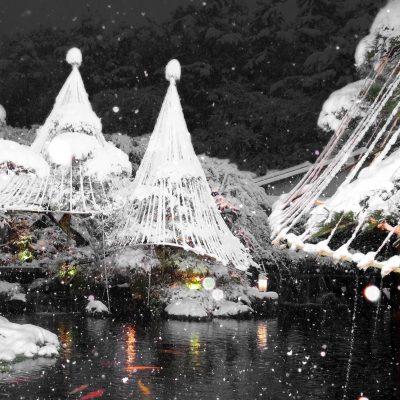 昭和の森車屋 雪囲い