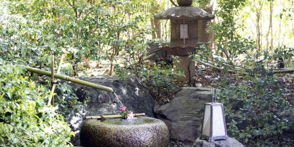 昭和の森車屋 竹藪